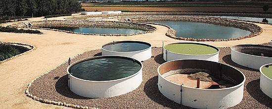 proyecto pionero de depuración de aguas del CENTA