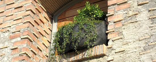 Eco Jardinera para espacios públicos