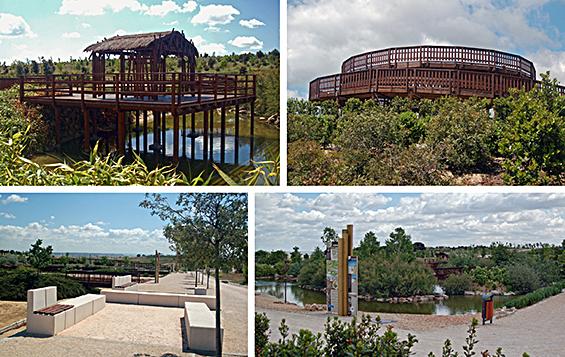 Parque  Forestal Felipe VI en Valdebebas, Madrid