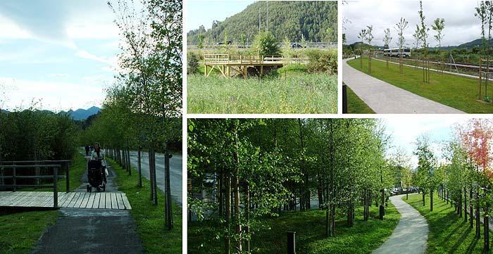 Paseo del Juncal de la Marisma de Unquera, Cantabria