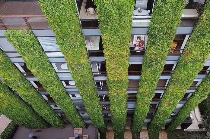 bogota jardin vertical