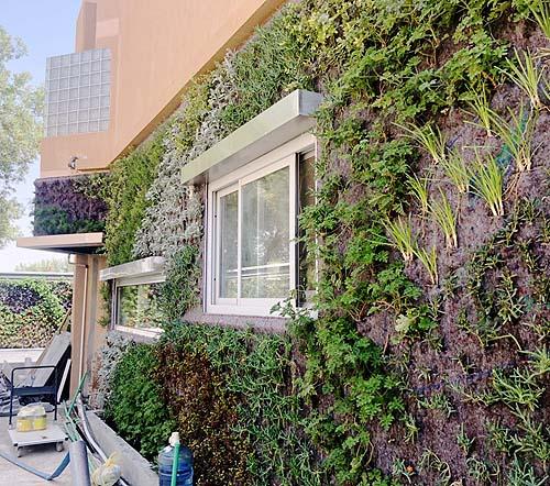 ignacio solano jardin ryahd