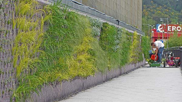 jardin-vertical-berango