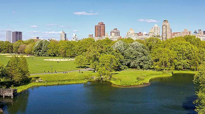 Espacios verdes de las ciudades