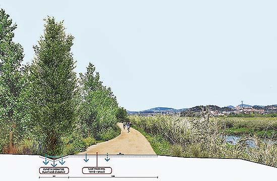 Mejora de la calidad ambiental del camino del río Llobregat en Pallejà